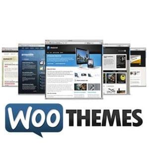 Do Woo Themes really work?