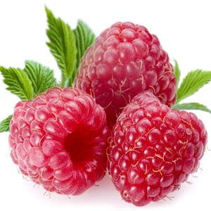 Do Raspberry Ketones Really Work Does It Really Work