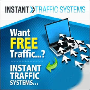 Does Instant Traffic Systems work?