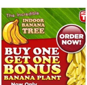 Does Banana Giant work?