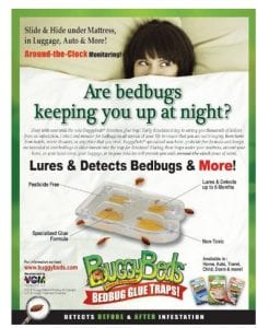 Buggybed info