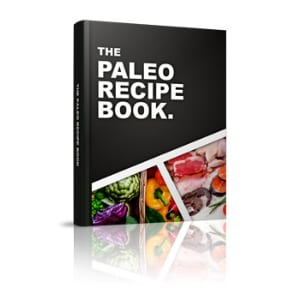 Does the Paleo Recipe Book work?