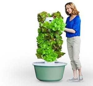 Does the Tower Garden Work?