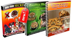 Does Dog Food Secrets Work?